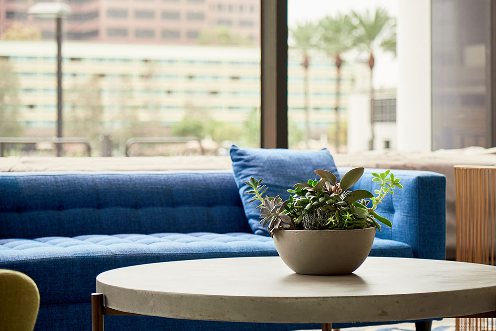 business interior blue couch commercial photography